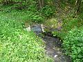 Źródło z wodą prawdopodobnie zdatną do picia - panoramio.jpg
