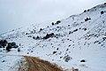 Χιονισμένο Παναχαϊκό (28-12-2008) - panoramio.jpg