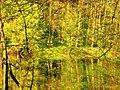 Апрель в Кузьминках, Москва, Россия. - panoramio - Oleg Yu.Novikov (12).jpg