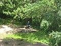 Вид 1 - panoramio.jpg