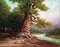 И. Н. Занковский. Старый дуб у реки.jpg