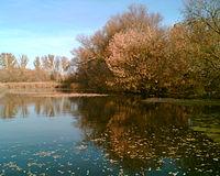 Осенняя Идолга в Озерном.jpg