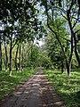 Парк Глібова, Веселий Поділ, 04.jpg