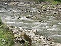 Речка в Гребенове - panoramio (3).jpg