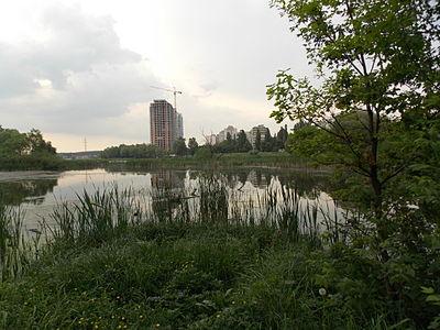 Святошинський лісопарк 57.jpg