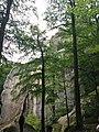 Скельно-печерний комплекс біля с.Бубнище (3).jpg