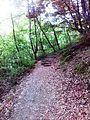 Смоларски водопад 41.jpg