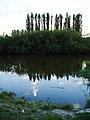 Теремнівські ставки, Луцьк.jpg