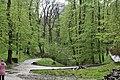 Трускавецький парк 5.jpg