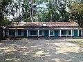 কলাখালী সরকারি প্রাথমিক বিদ্যালয় - panoramio.jpg