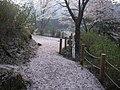 うつぶな公園 - panoramio (22).jpg