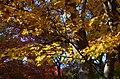 化野念仏寺にて 京都市右京区 Adashino Nembutsuji 2013.11.21 - panoramio.jpg