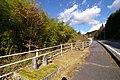 国道363号 - panoramio (1).jpg