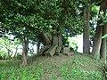 庚申塔 - panoramio (4).jpg