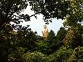 普陀山南海觀音(仰視) - panoramio.jpg