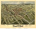 1875 Danbury picture map.jpg