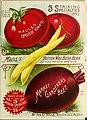 1893 Maule's seed catalogue BHL42541288.jpg