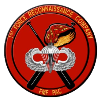 "1st Force Reconnaissance Company - The seal of 1st Force Recon Company during the 1950s. The paddles (background) are from Jones's Amphib Recon Co. of WWII, pathfinder wings with flame (foreground), are from the pathfinder platoons of WWII, and silver ""jump wings"" (facing) reflects airborne capabilities."