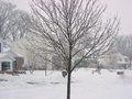 2007 Winter Storm.jpg