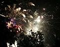 2010 07 14 bastille day fireworks 053 (4839484298).jpg