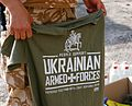 2014-07-10. Луганская область 022.jpg