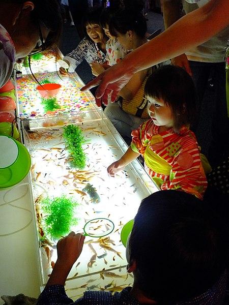 File:20140729 Ichijima-Kawasuso Matsuri 市島川裾祭金魚すくい(丹波市市島町)DSCF0566.JPG
