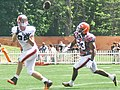 2015 Cleveland Browns Training Camp (20222221786).jpg