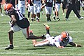 2015 Cleveland Browns Training Camp (20247044825).jpg