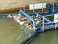 2016-04-12 12-30-54 sous-pont-austerlitz.jpg