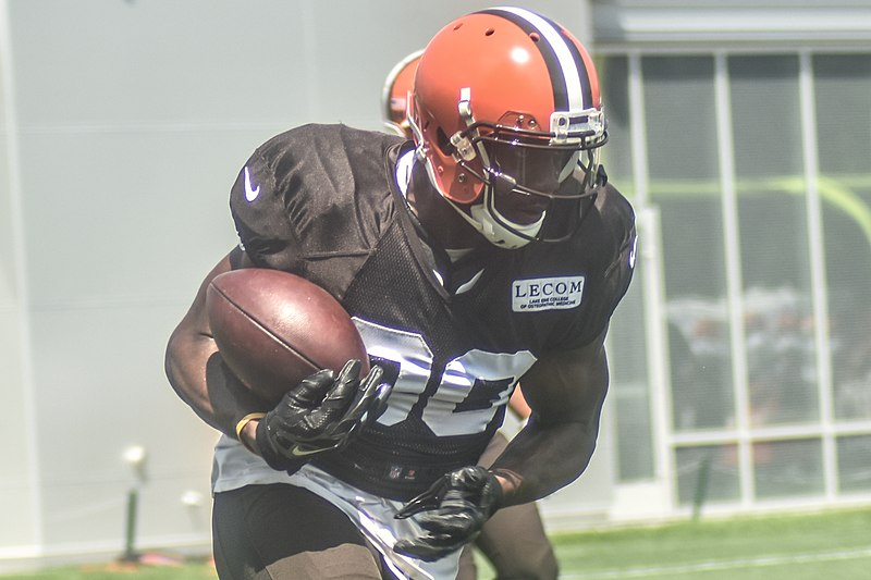 File:2016 Cleveland Browns Training Camp (28407799910).jpg
