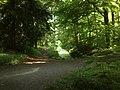 2017-06-18-Düsseldorf-Benrath-NSG Schlosspark Benrath-Blick auf den zugewachsenen teilgesperrten Schlangenbach.jpg