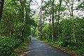 2019-08-17 Hike Hardter Wald. Reader-06.jpg