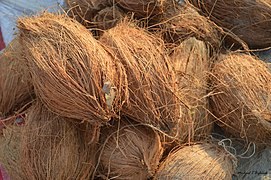 2019 Jan 15 - Kumbh Mela - Coconuts For Sale.jpg