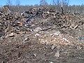 25 апреля 2010 года. Невская Дубровка. На этом снимке - свалка отходов на полях, рядом с местом строительства коттеджей. - panoramio (7).jpg
