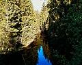 3730. Toksovo. Okhta River.jpg