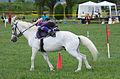 4ème manche du championnat suisse de Pony games 2013 - 25082013 - Laconnex 16.jpg