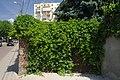 46-101-1124 Lviv SAM 9016.jpg