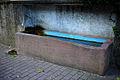 64625 Bensheim-Auerbach Detail Laufbrunnen vor Bachgasse 46.jpg