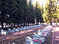 975. Санкт-Петербург. Северное кладбище.jpg