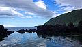 Açores 2010-07-19 (5068042501).jpg
