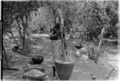 ASC Leiden - Coutinho Collection - 11 16 - Village in the liberated areas, Guinea-Bissau - 1974.tiff