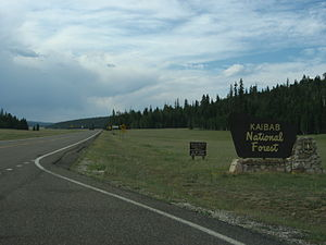 Arizona State Route 67 - SR 67 at the Kaibab National Forest entrance