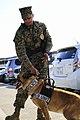 A Marine's best friend 140116-M-CP522-002.jpg