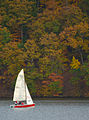 A great day to sail (6280196632).jpg