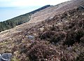 A sketchy path through boulders and heather on the slopes of Millstone Mountain - geograph.org.uk - 1983841.jpg