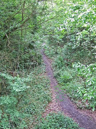 Sydenham Hill Wood - A view of the erstwhile trackbed from the footbridge.