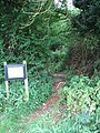 A woodland track - geograph.org.uk - 1395450.jpg