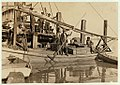 A young oyster fisher (?) Others smaller employed in busy season - Location- Apalachicola, Florida LOC 7985814475.jpg