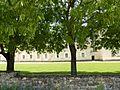 Abbaye de Fontevraud - 010.JPG