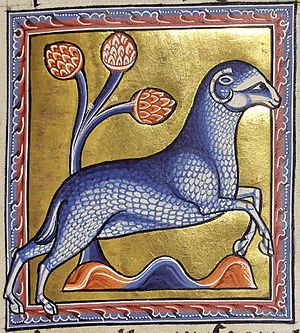History of the domestic sheep - A depiction of a ram from the Aberdeen Bestiary, a 12th-century  illuminated manuscript